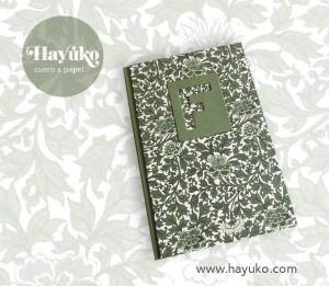 Agenda-F hayuko