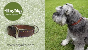 Collar-para-perro-hayuko