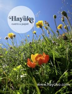 Hayuko-flores